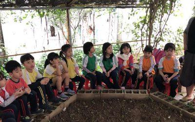 SÁNG KIẾN XANH | CLB Bàn tay Lấm Lem tại trường CGD