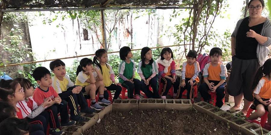 SÁNG KIẾN XANH | CÂU LẠC BỘ BÀN TAY LẤM LEM tại trường CGD